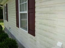 Before Siding Cleaner