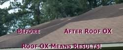 OX Roof Cleaner Results photo