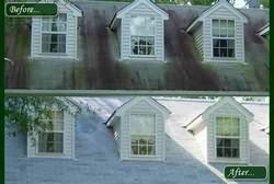Roof Cleaning Results Photo