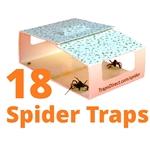 18 Traps Direct Spider Traps