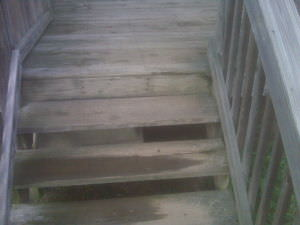 Before Deck Cleaner QSE