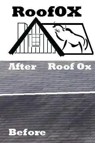 Shingle Roof Stain Cleaner