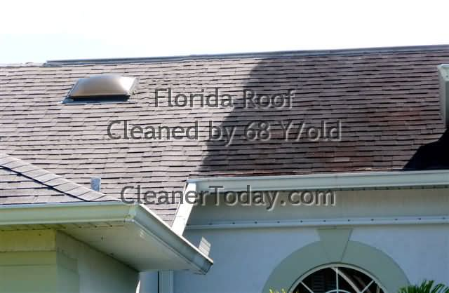 Roof Cleaning Photo