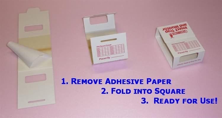 Spider Traps: Brown Recluse Spider Glue Traps